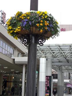 福島駅前 花いっぱい